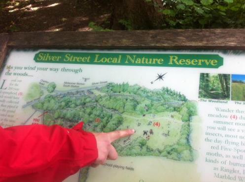 silver Street Meadow